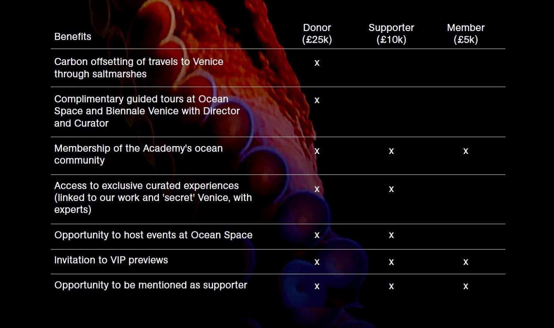 TBA21-Academy's membership opportunities